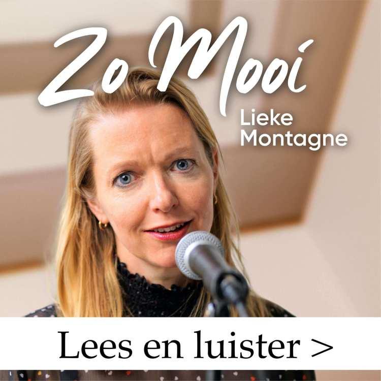 Knop naar pagina single Zo Mooi